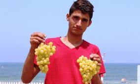 """""""عنب غزة"""" يغزو بيوت القطاع"""