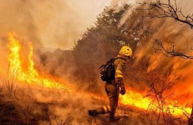 ارتفاع عدد ضحايا الحرائق  في البرتغال وإسبانيا