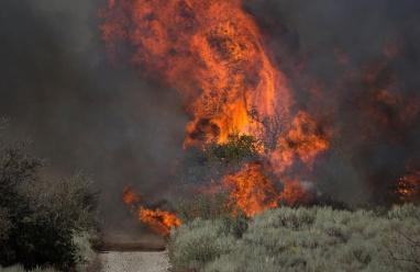 حريق اسبانيا: اخلاء 1800 شخص ومكافحة النيران معقدة