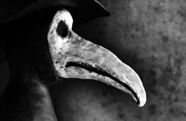 """دراسة تحذر: خطر """"الموت الأسود"""" يهدد العالم"""