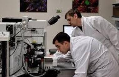 علماء روس يبتكرون كلية اصطناعية