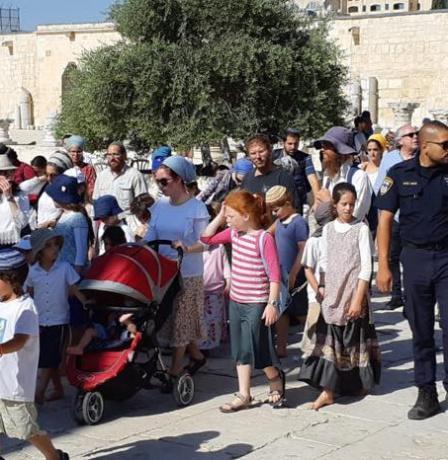 مستوطنون ينفذون اقتحامات واسعة للمسجد الأقصى