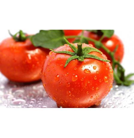 اكتشاف سر تغير طعم الطماطم!