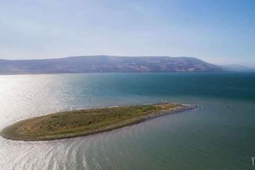 جزيرة صغير ظهرت في بحيرة طبرية